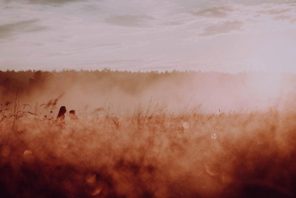 Poranna rosa, mgła, oraz cień zakochanej pary