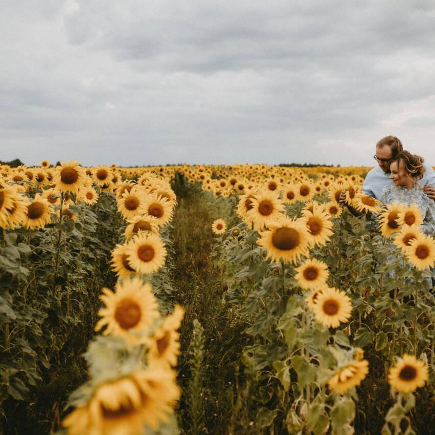 ziarnko do ziarnka Ewelina i Paweł w słonecznikach